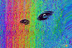 Levitation Lights Colour Eyes.