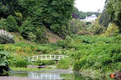 Trebah Garden 3