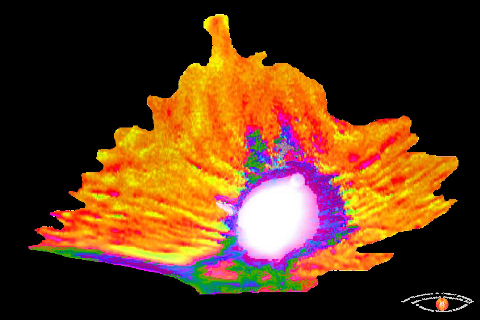 Cave Graphics Finxs (1).