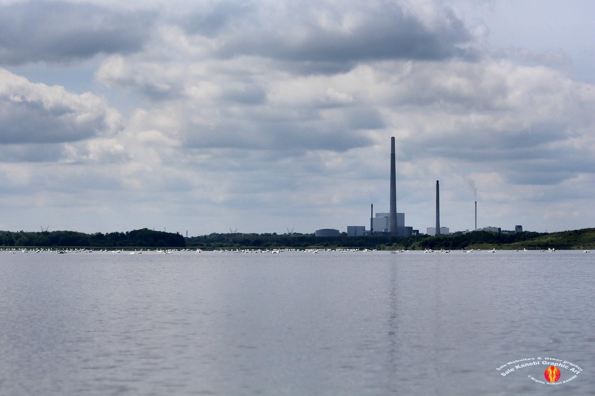Odense Fjord Kayak 11