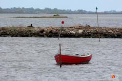 Otterup Harbour 9