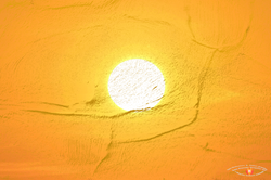 Cave Graphics Sunwagon.