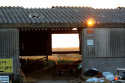The Farmer Shop 21