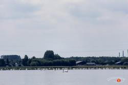 Odense Fjord Kayak 10
