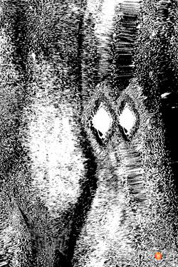Levitation Lights Swan's (6).