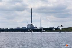 Odense Fjord Kayak 14