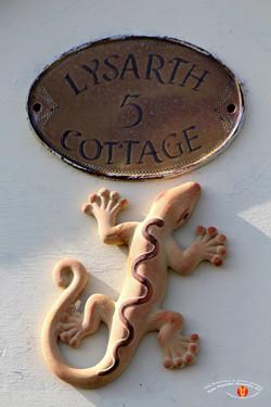 Village Lizard 11