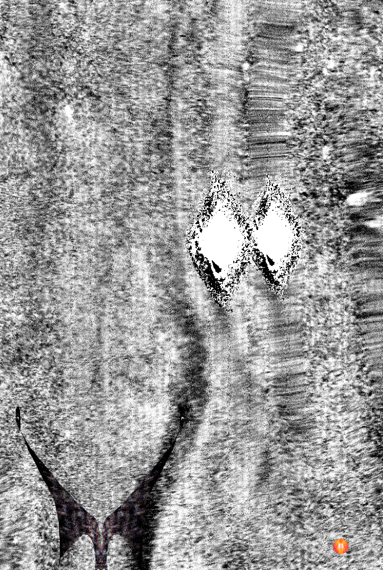 Levitation Lights Swan's (5).