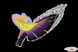 Bark Graphics - 3D Logo's Butterflies.