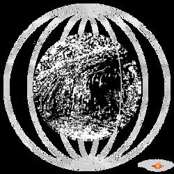 Globe black & white.