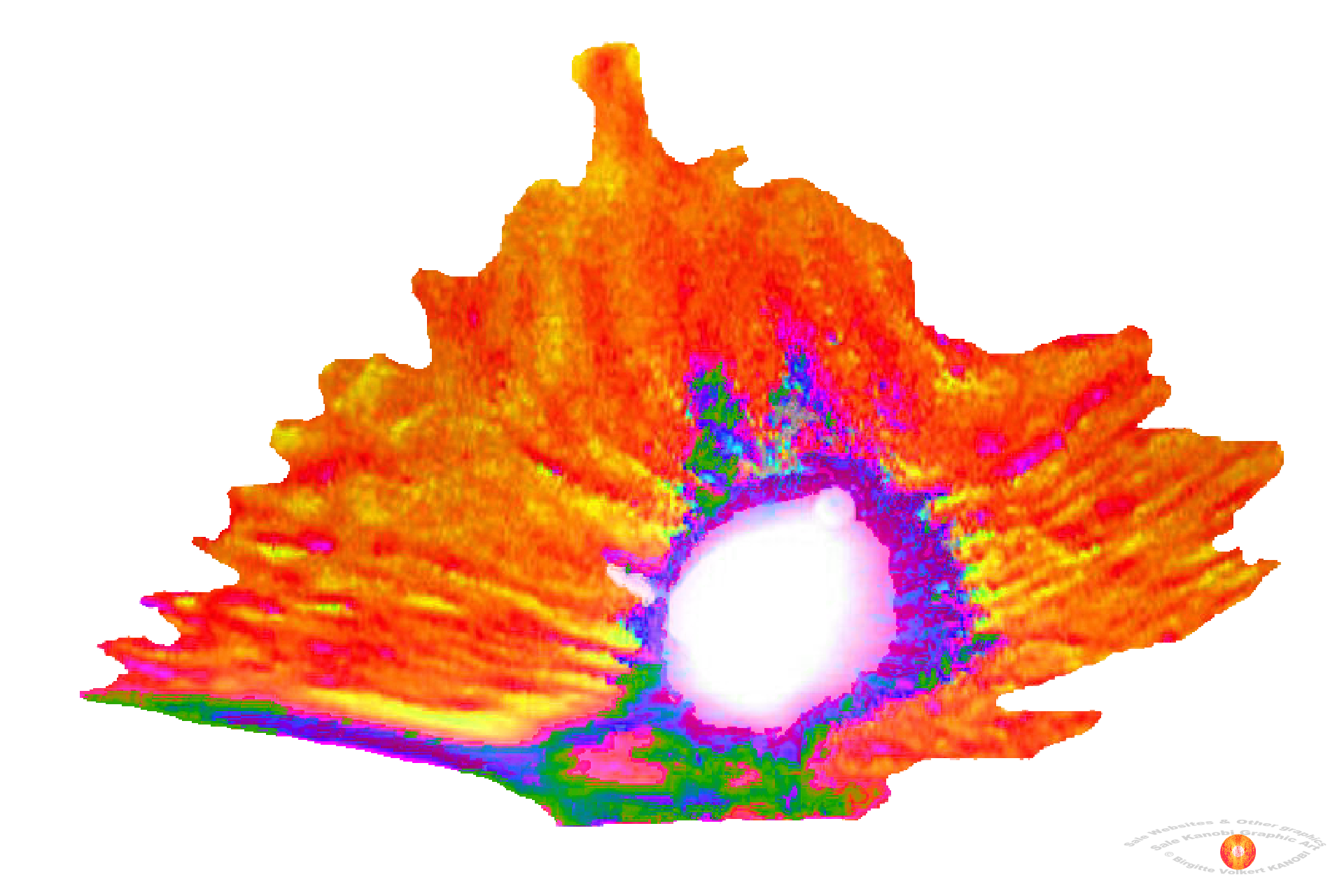 Cave Graphics Finxs (2).