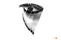 Bark Graphics - 3D Logo's Eye Seashell.