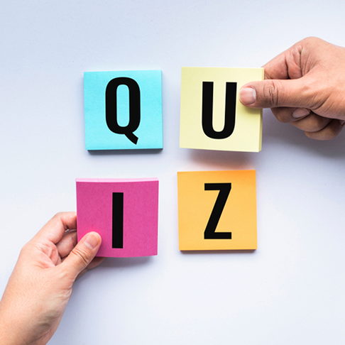 8 new quizzes we know you'll love