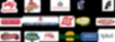 NBSM logos.png