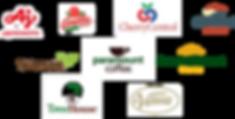 NPSM logo.png