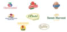 SNO Logo Spring 2020.png