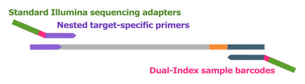 xceloseq_rna_workflow_7.png