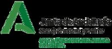 Logo_positivo_transparente.png