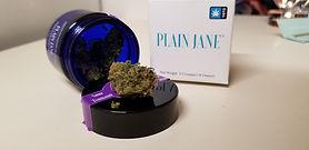 Try Plain Jane