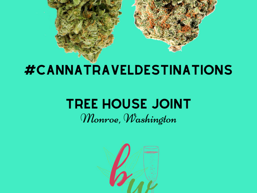 Mountain Views Tree House Joint | #CannaTravelDestinations