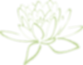 lotus-blossom-304875_1280.png