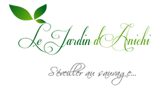 anichi nouveau logo.png