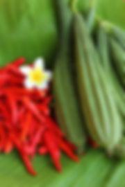 Vacances écotourisme table d'hôte Guadeloupe