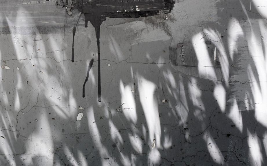 渐变之事II:静物札记 夏落(Charlott Markus)的个展在芝麻空间