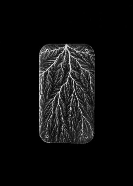 palmstroke-2.jpg