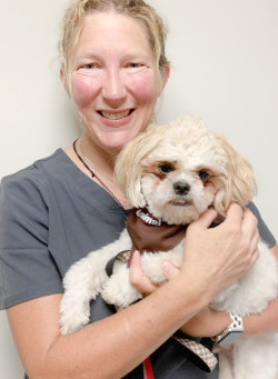 Meet our new therapy teams