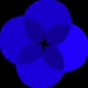 Circles_ENALISS_1_edited_edited.png