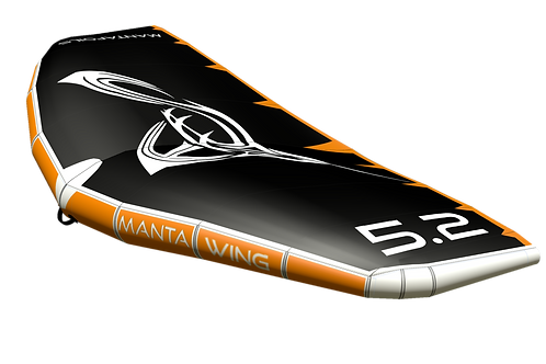 Manta wing 2021