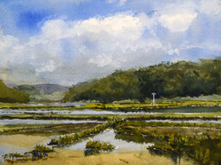 Summer Skies Over the Marsh