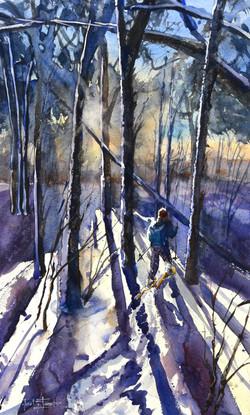 Trek in the Woods