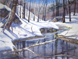 Reflections on a Winter Stream