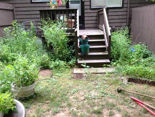 Before - Backyard Garden