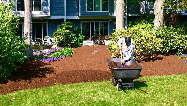 mulch, garden mulch