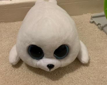 TY Beanie boo's Icy seal teddy