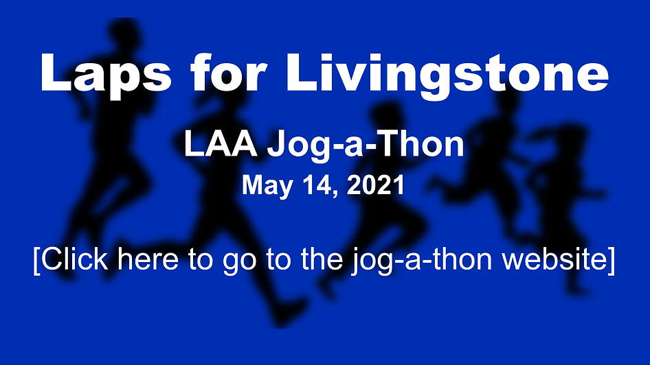 Jog-a-Thon Graphic - Website Link.png