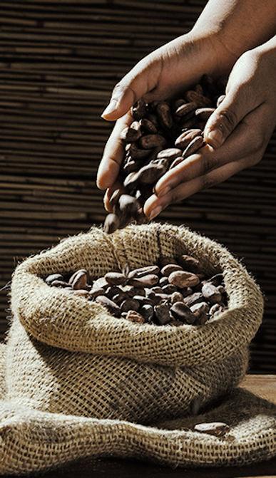 hand kakao.jpg