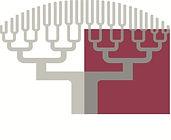 logo IUT Paris Descartes  (1).jpg