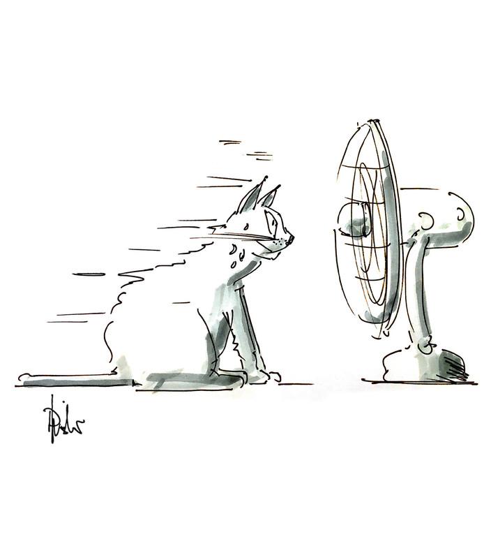 Karikaturen_FentiKater.jpg