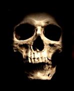 Skull_edited.png
