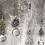 Thumbnail: Semilla Flor de laVida en Plateado con piedra Cuarzo Rosa