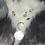 Thumbnail: Luna Plateada u Ocre (pincha la foto)mas piedras