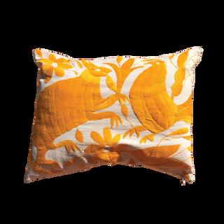 Mexican Cushion