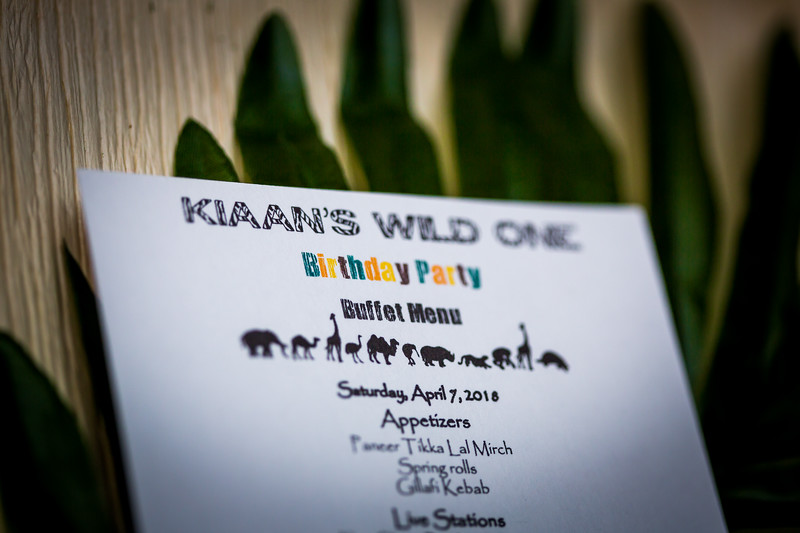 "Kiaan's Jungle ""Wild One"" Birthday"