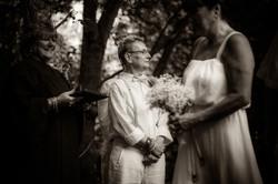2015 Brenda & Donna's Wedding