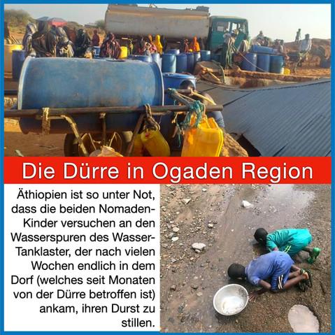 Aktive Jugend lässt die Menschen und Tiere in Südostäthiopien nicht verdursten!