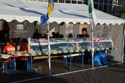Spaju Fest in Mannheim Marktplatz 17